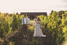 Wedding celebration at the winery by On Point Agency
