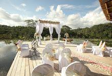 Rooftop Lotus Pond by Four Seasons Resort Bali at Sayan