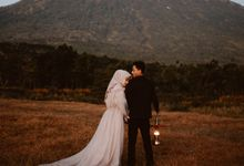 V + S by Wild Love Stories