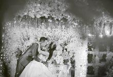 Gio ❤ Mila by The Sweet Honeymoon