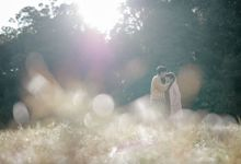 THE PREWEDDING OF MAELI & WAHYU by yourmate