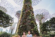 Gardens by the bay Pre-wedding by Eric Oh  Korean Photographer