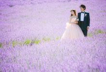 [HOKKAIDO] Basking amongst the lavender fields by The Wedding & Co