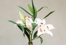 Flower Succulent Centerpiece by Kopi dan Tanaman