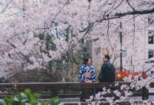 Kyoto Sakura Pre Wedding Shoot by Yipmage Moments