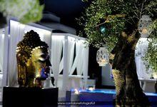 Wonderful Villa Carafa by Villa Carafa