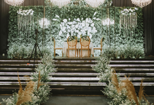 Wedding Day Aria & Tika by Liblop Picture