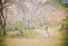 Kew Mae Pan pre wedding in Chiangmai by Lovedezign Photography