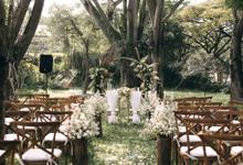 Revi & Angela Wedding  by Maeera Decoration