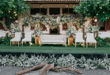 Ricky & Shelni Wedding  by Maeera Decoration