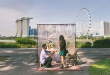 Proposal at Bay East Gardens by Awesome Memories Photography