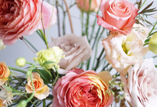 Pastel Pallete by Mfreshflowers