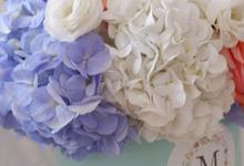 All about Hydrangea by Mfreshflowers