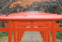 [HOKKAIDO] Fushimi Inari Shrine by The Wedding & Co