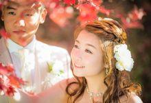 [TOKYO] Autumn Maple Tree Season by The Wedding & Co