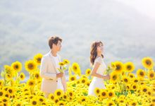 Korea Pre-Wedding Photoshoot - Studio 22 by Willcy Wedding by Willcy Wedding - Korea Pre Wedding
