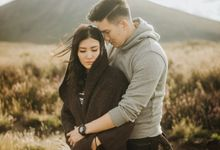 New Zealand Connection Session - Cindy & Henry by ILUMINEN