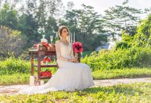 styled shoot - long sleeve lace gown by Le Seine Bridal