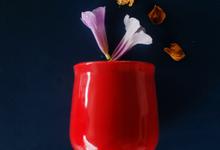 OCHA CUP by Boger Keramik