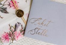 Ankit & Stella by OollieFlora