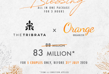 The Tribrata by Orange Organizer