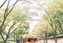 Seoul Korea Engagement  shoot by Foreveryday Photography