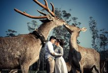 Mystery Of Love - Patrick & Gracia by Huemince