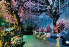 Cherry Blossom by Suryanto Decoration