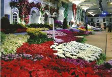 Spain Garden by Suryanto Decoration