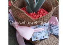Souvenir Kaktus (Packaging) by Succulent Murah Bandung