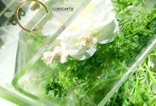 Edhon & Putri ring box by Coruscant.id