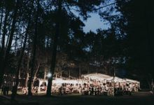 An Elegant Maroon wedding with boho touch in a pine forest for  Rara and Anthoni by Elior Design