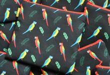 Birds Series by KRAVITAVI