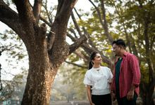 Hitesh & Vaibhavi Pre Wedding by Wedding By Cine Making