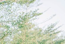 Prewedding - Gorby & Stefanie by State Photography