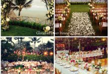 Our Portfolio by Gloriosa Flower House