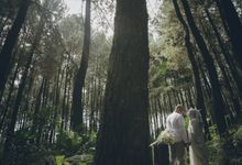 Rini & Rendy Prewedding by thousand dreams picture