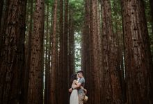 Marvelous Redwood Forest Wedding Anniversary in Warburton Melbourne Australia by fire, wood & earth