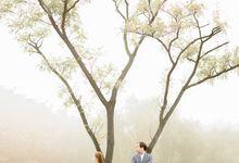 Prewedding Autumn  Korea Selatan by Luminance.pict
