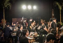Dana & Brena Wedding by Music Avenue