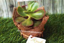 Sukulen Buket Goni by My Garden Gift