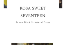 Rosa Sweet Seventeen Birthday Party by Seraglio Couture