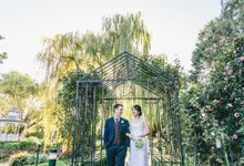 The Wedding of Sisilia and Daniel by Story Of Melbourne