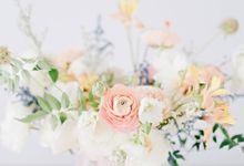 Prewedding - Teguh & Lidya by State Photography