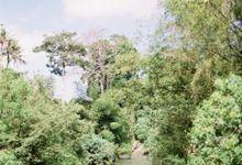 Four Seasons Ubud Bali Wedding by Stepan Vrzala