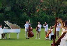 Teaser Sound Of Nature Concert 4 August 2018 by Stradivari Orchestra