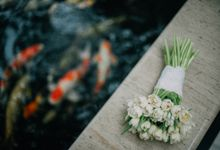 Edward & Fanny by unravel photograph