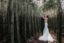 Four Seasons Hotel Singapore Wedding by Darren and Jade Photography