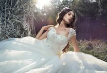 Classic Princess Ball gown silhouette Megallie wedding dress by DevotionDresses