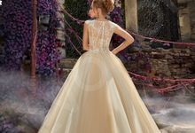 Luxury Princess Ball Gown silhouette Arna wedding dress by DevotionDresses